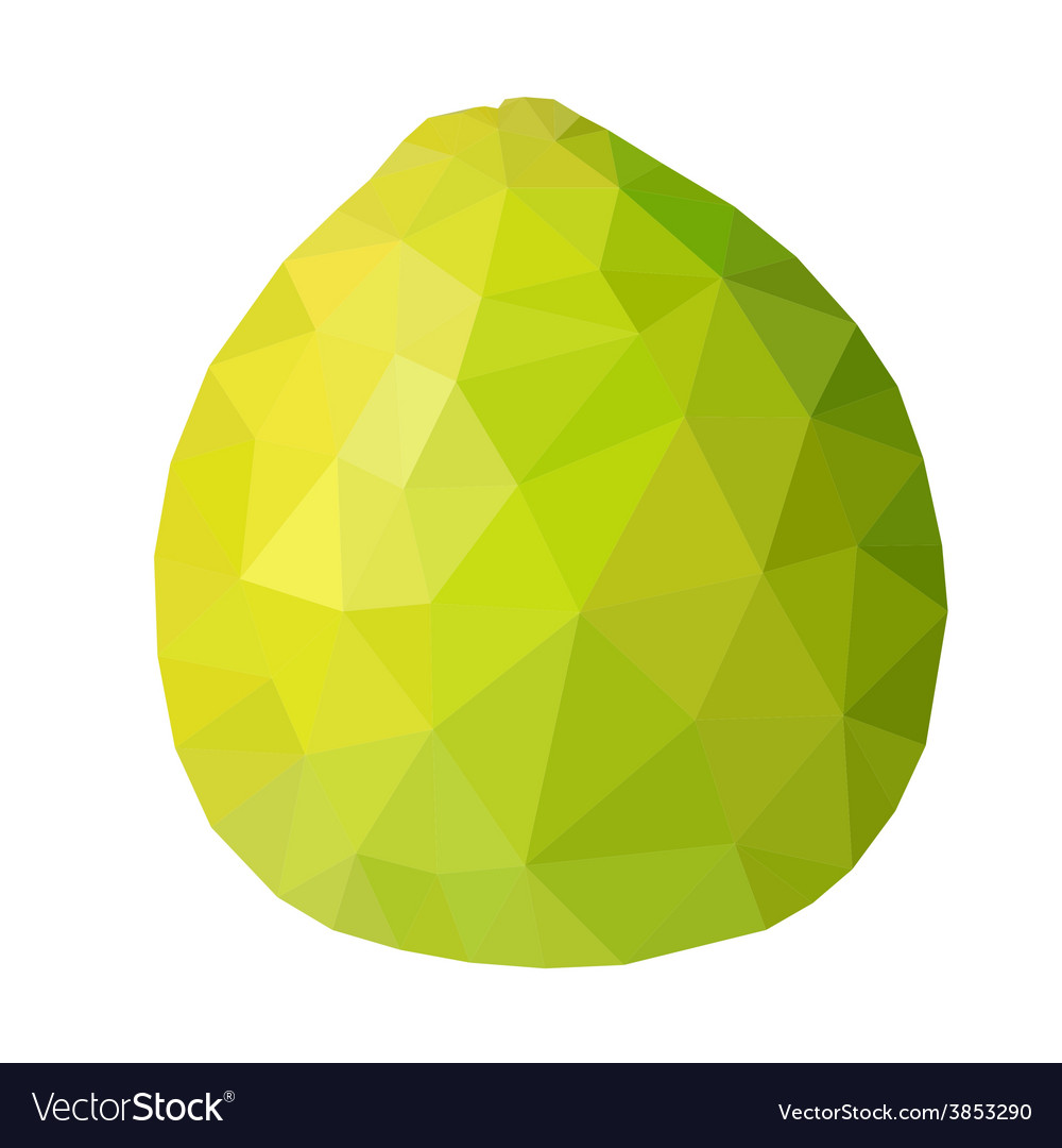Low poly green pomelo vector | Price: 1 Credit (USD $1)