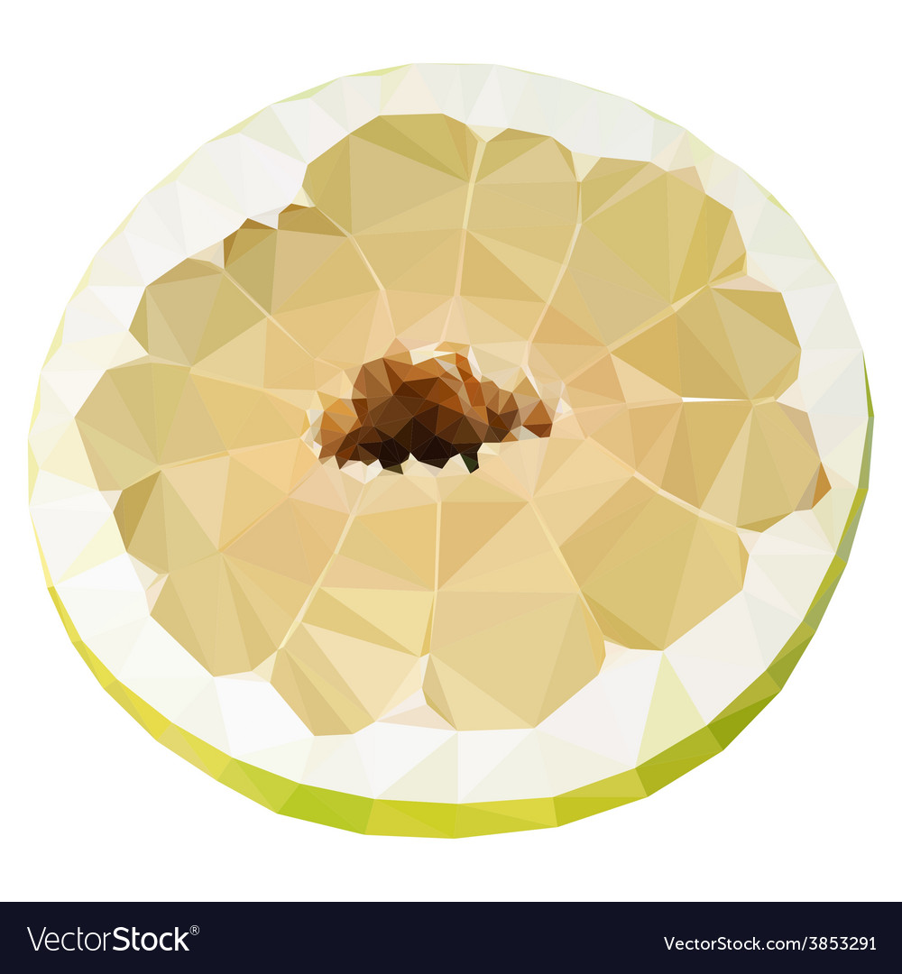 Low poly half of pomelo vector | Price: 1 Credit (USD $1)
