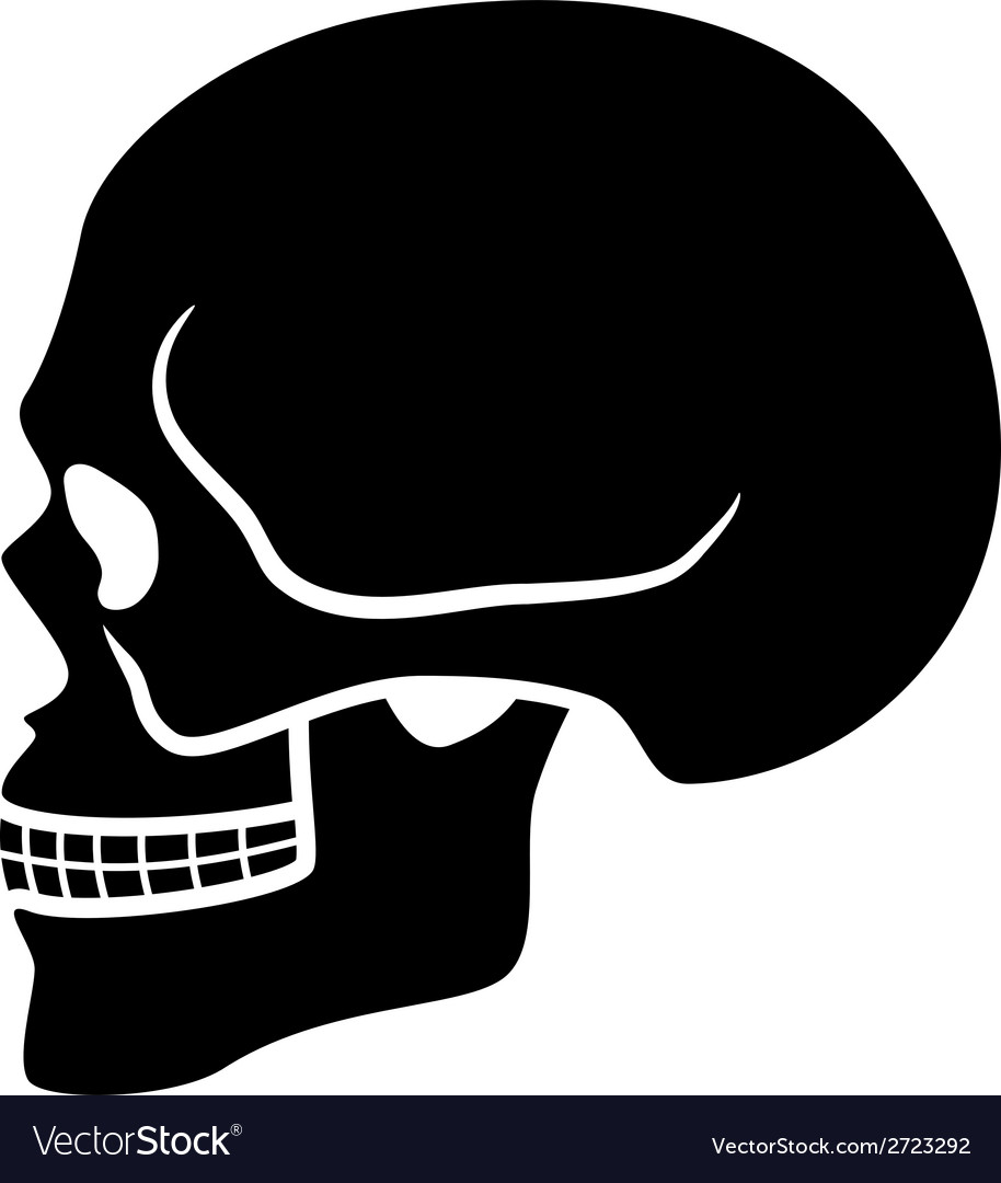 Human skull symbol - side view vector | Price: 1 Credit (USD $1)
