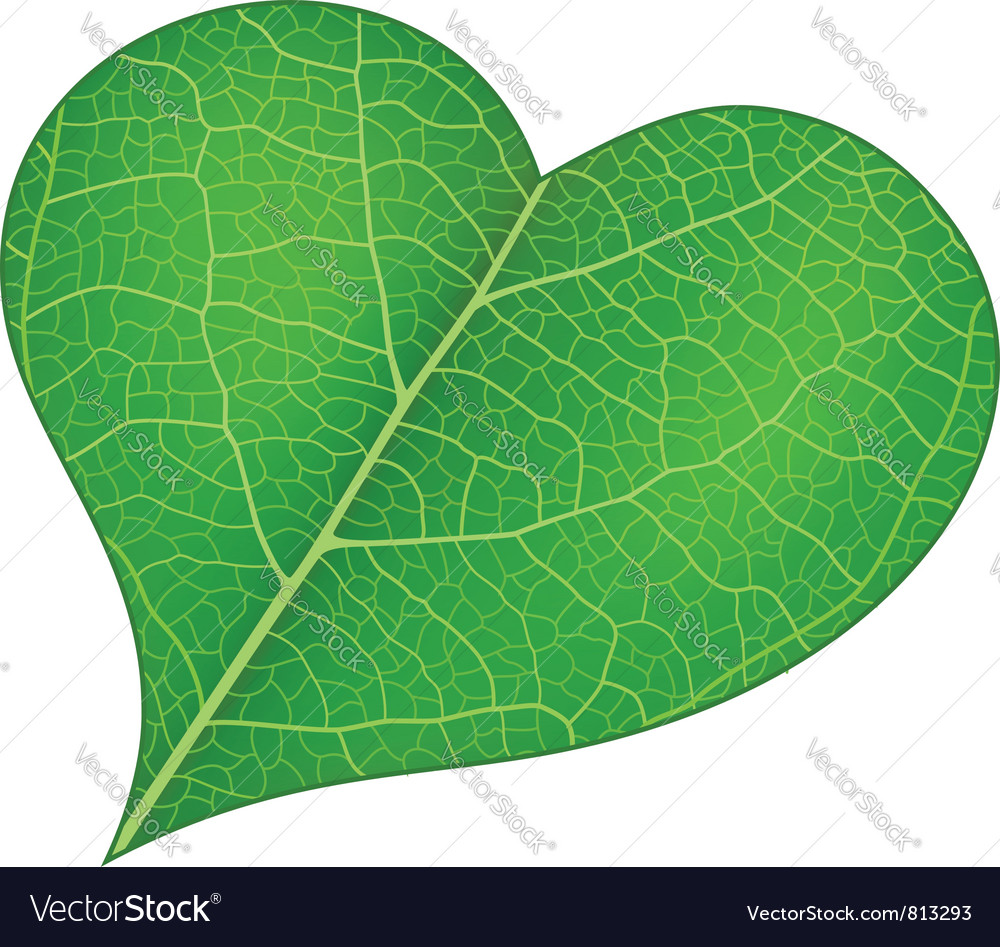 From nature with love vector | Price: 1 Credit (USD $1)