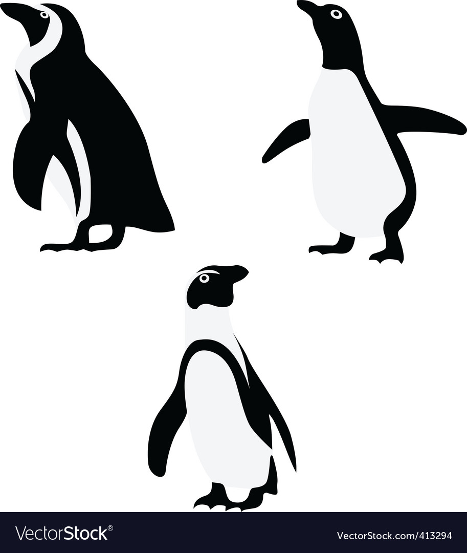 Penguin vector | Price: 1 Credit (USD $1)
