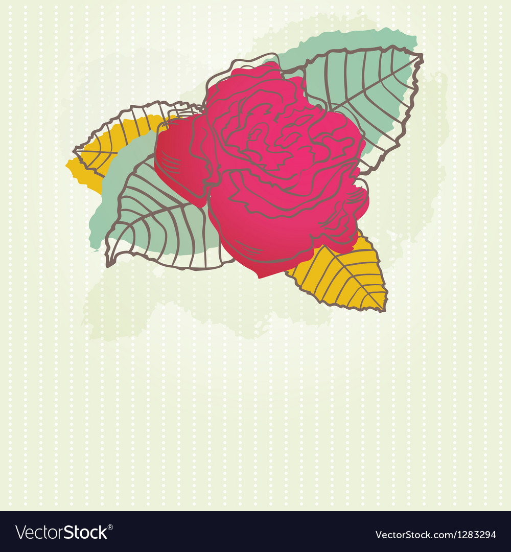 Peony flower vector | Price: 1 Credit (USD $1)