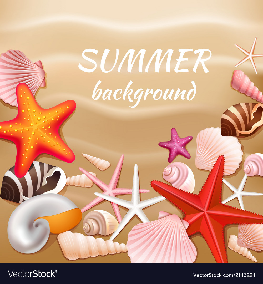 Seashell sand summer background vector | Price: 3 Credit (USD $3)