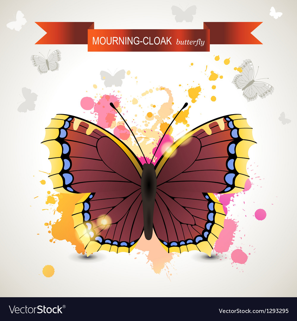 Mourning cloak butterfly vector | Price: 1 Credit (USD $1)