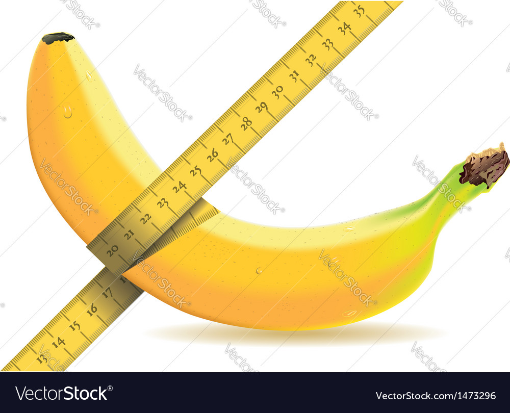 Banana isolated on white with a tape measure vector | Price: 1 Credit (USD $1)