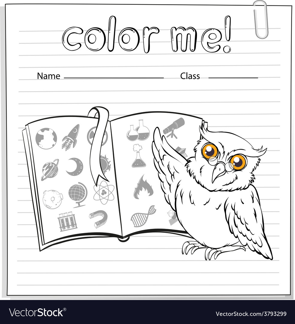 A worksheet showing an owl and a book vector | Price: 1 Credit (USD $1)