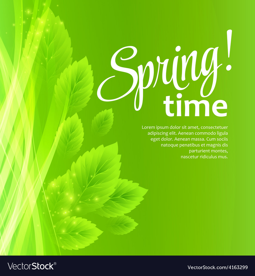 Spring fresh green leaves vector   Price: 1 Credit (USD $1)