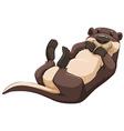 Otter vector