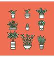 Set of houseplants in pots vector