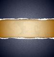Textured torn paper vector