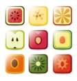 Fruit application icons vector