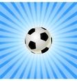 Soccer balls icon vector