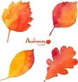Autumn orange watercolor painted foliage set vector