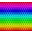 Colorized pattern hexagon mosaic vector