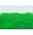 Garden grass vector