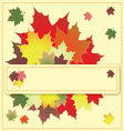 Colorful maple leaves on the greeting card vector