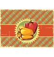 Peppers vintage label vector