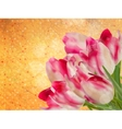 Vintage floral frame background eps 10 vector