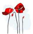 Red poppies on a sky background vector