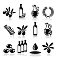 Olive oil olive branch icons set vector
