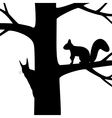 Silhouette two squirrel on the tree vector