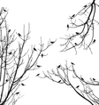 Birds on tree branches vector