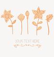 Bowandflowers1 vector