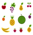 Fruits and berries set vector