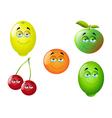 Cartoon fruit set 10 vector