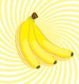 Three banana on an abstract yellow background vector