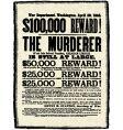Vintage reward poster vector