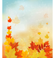 Autumn background with colorful leaves back to vector
