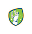 Australian cricket fast bowler bowling ball shield vector