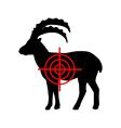 Ibex crosslines vector