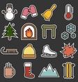Winter icon vector