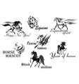 Horses stallions and mustangs vector