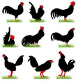 Roosters set02 vector
