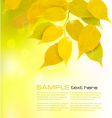 Autumn background with yellow leaves vector