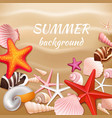 Seashell sand summer background vector