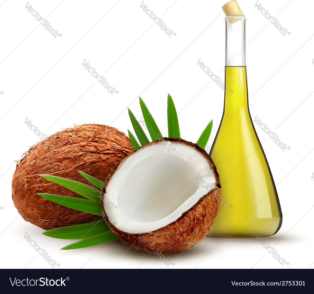 Coconut with oil vector | Price: 1 Credit (USD $1)