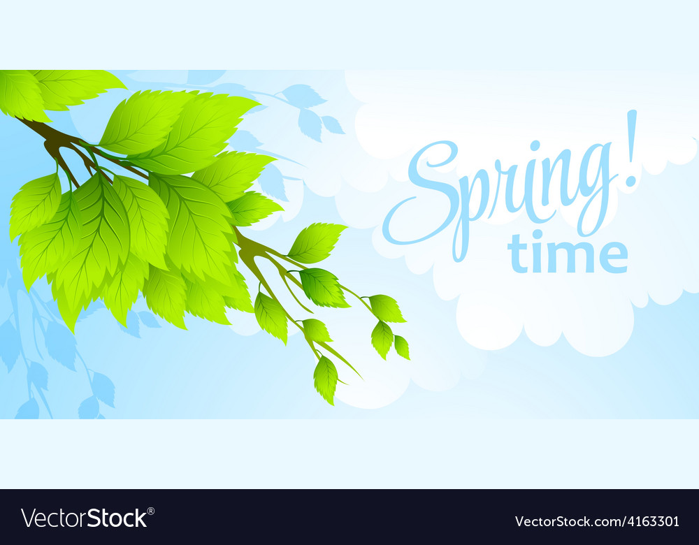 Spring fresh green leaves vector | Price: 3 Credit (USD $3)
