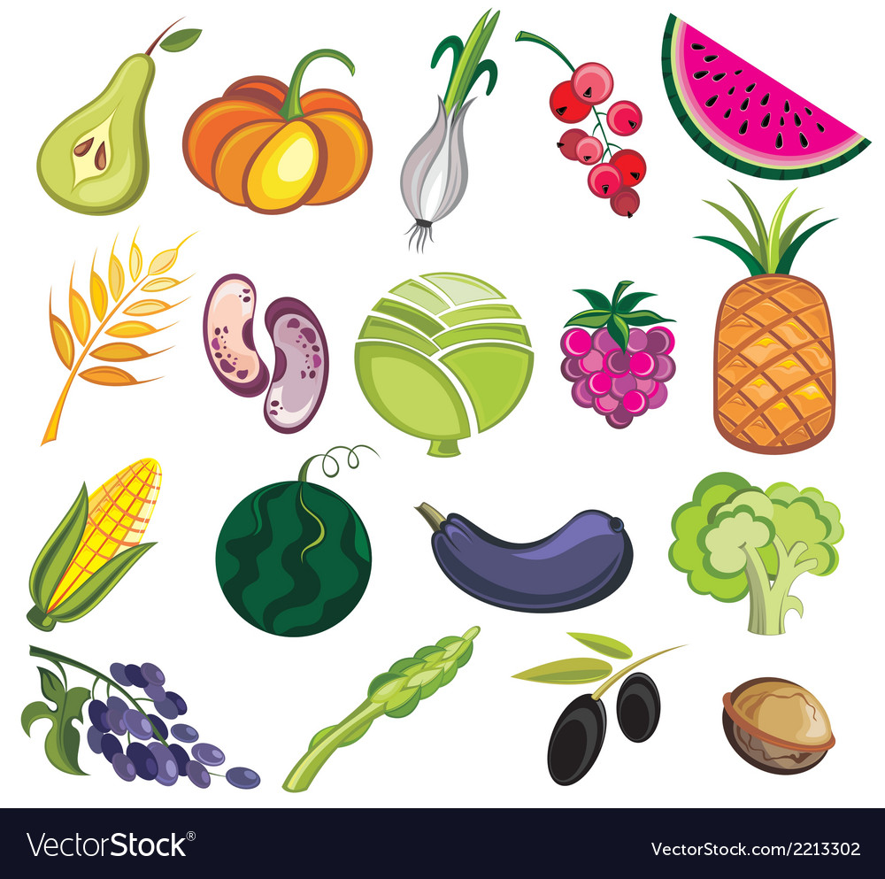 Collection of various fruits and vegetables vector | Price: 1 Credit (USD $1)