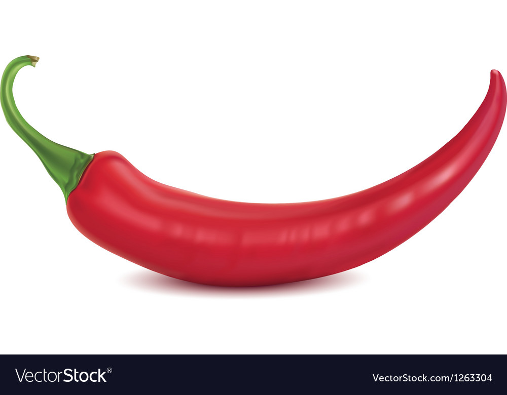 Chilli vector | Price: 1 Credit (USD $1)
