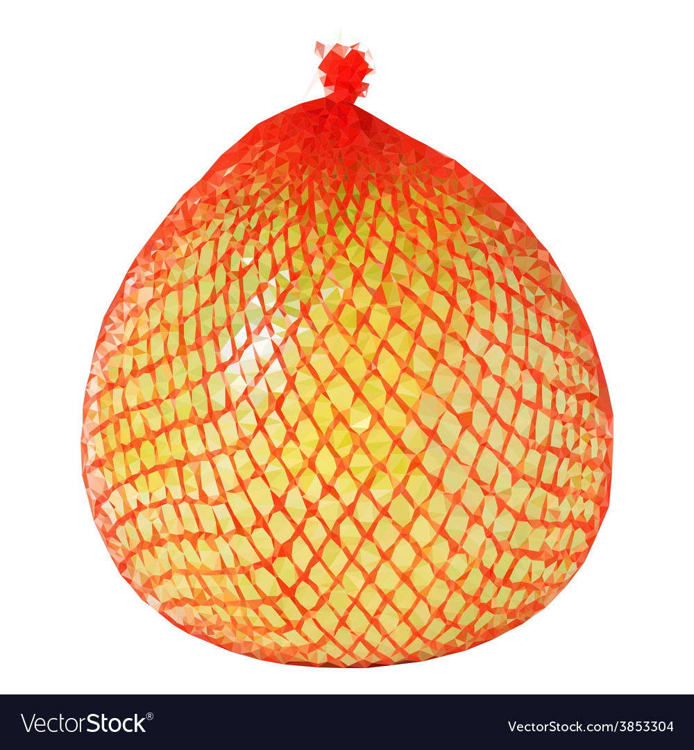 Low poly yellow pomelo wrapped vector | Price: 1 Credit (USD $1)