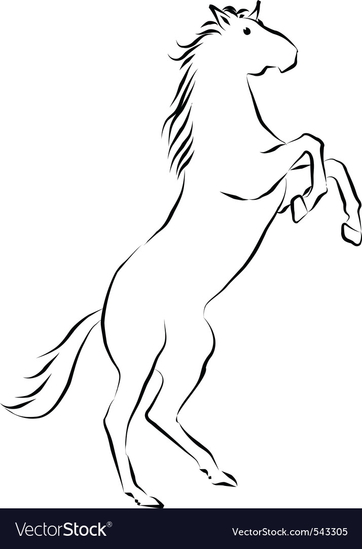 Rearing horse vector | Price: 1 Credit (USD $1)