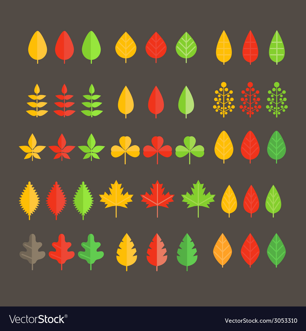 Different leaf collection vector | Price: 1 Credit (USD $1)