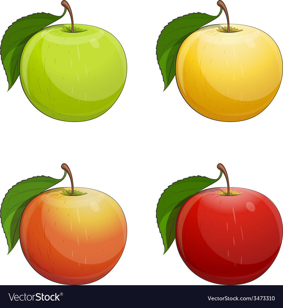 Ripe apple with green leaf vector | Price: 1 Credit (USD $1)