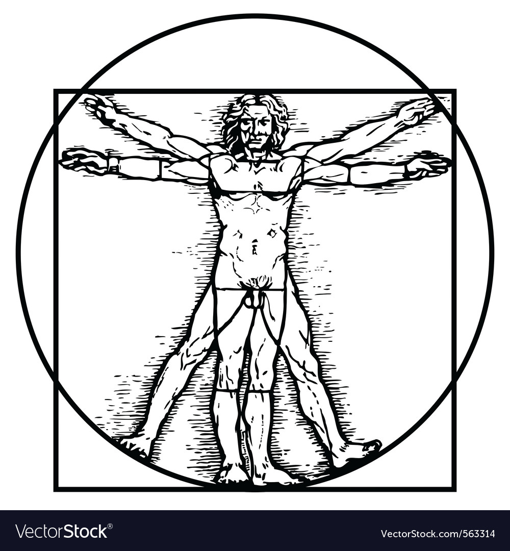 Vitruvian man vector | Price: 1 Credit (USD $1)