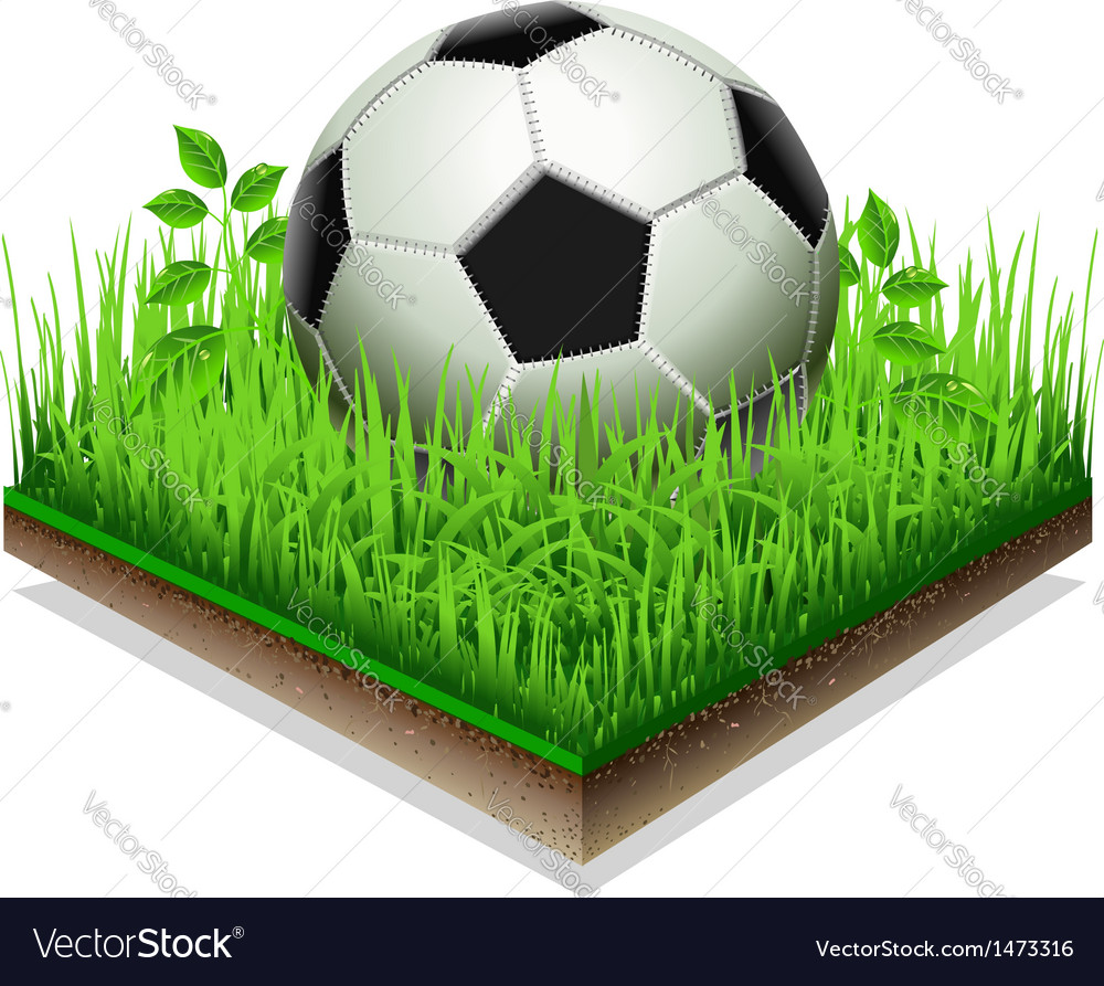 Soccer ball isolated on the grass plate isolated vector | Price: 1 Credit (USD $1)