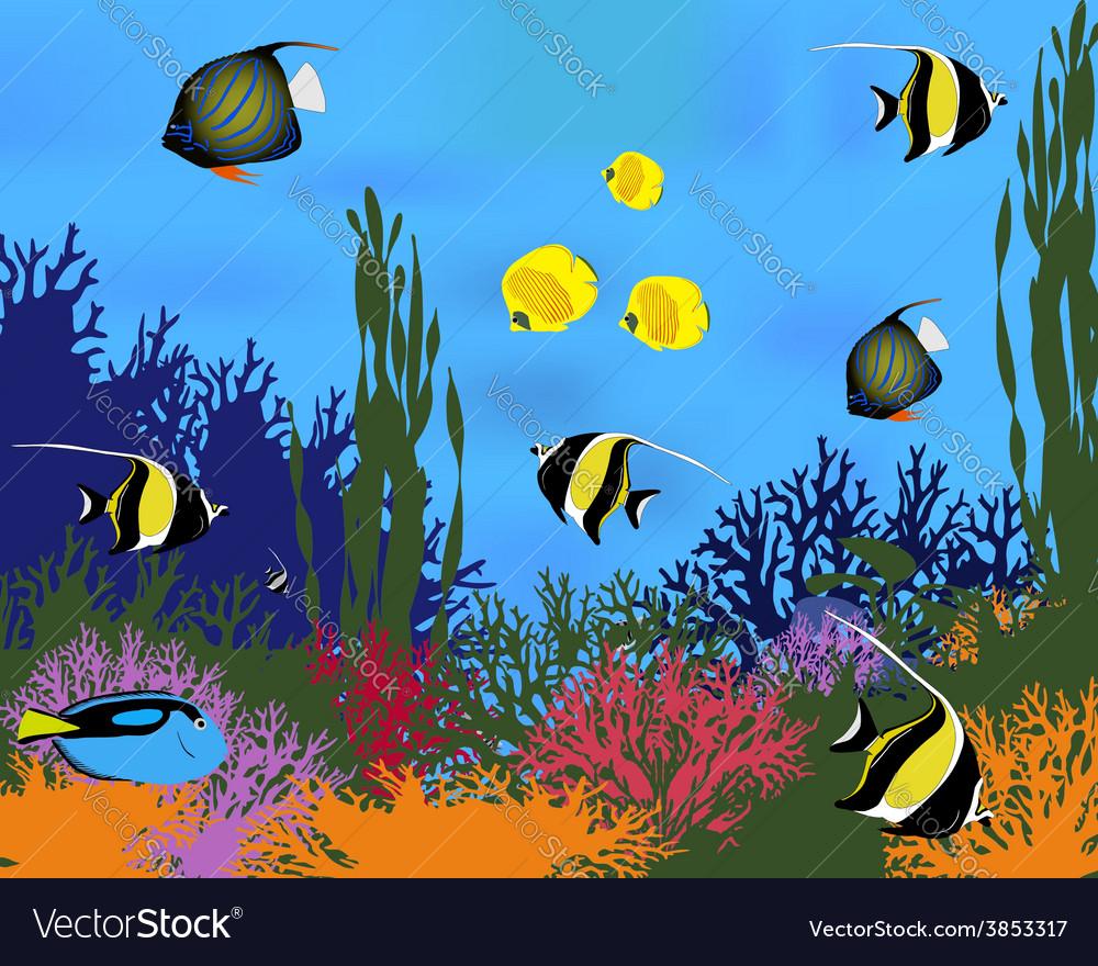 Coral fish vector | Price: 1 Credit (USD $1)